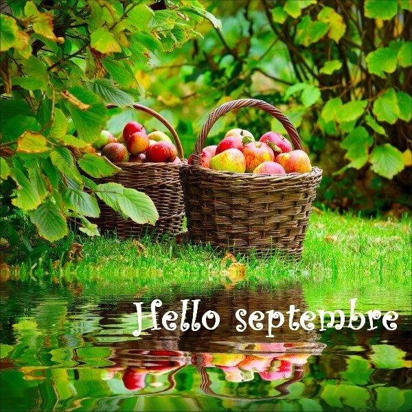 septembre_15