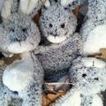 Les lapins chez CanalBlog