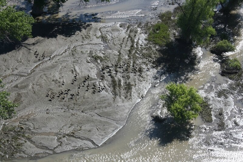 yellowstone_river_oil_spill