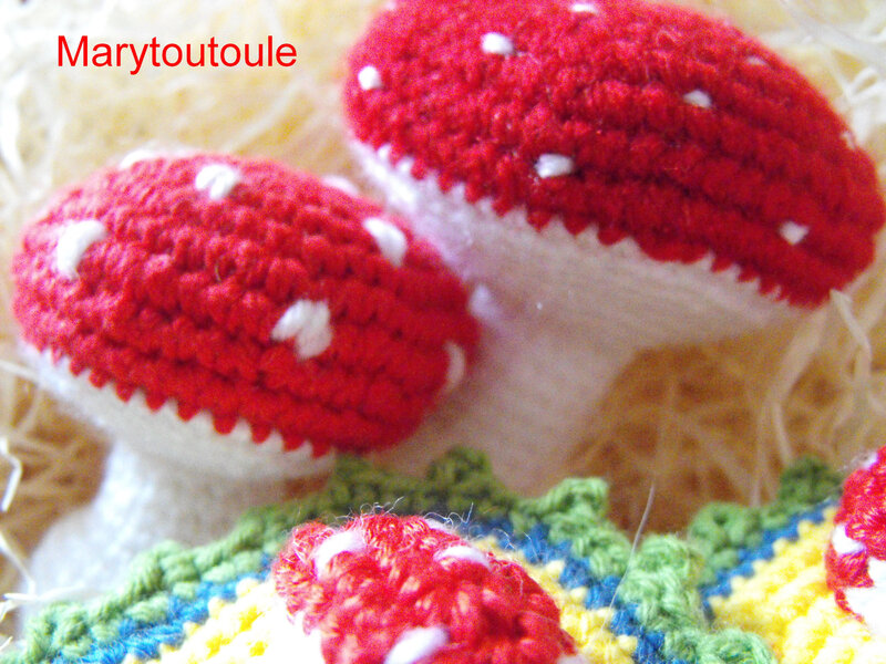 Champignons au crochet