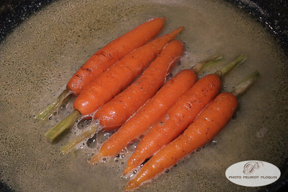 CAROTTES_glacees_