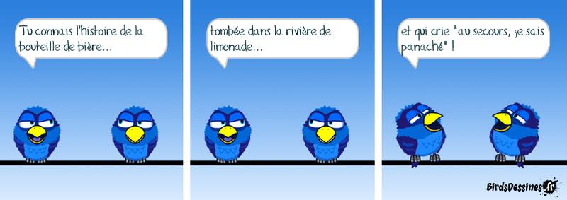 Birdsd