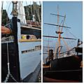 Den Helder bateaux
