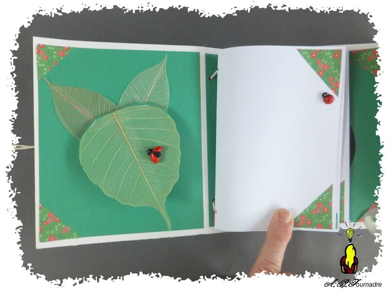 ART 2015 04 mini album coccinelle 5