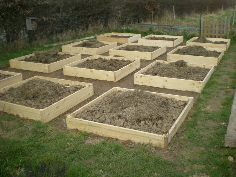 creation du potager en carres 4eme partie boutures de reves le jardin de sophie. Black Bedroom Furniture Sets. Home Design Ideas