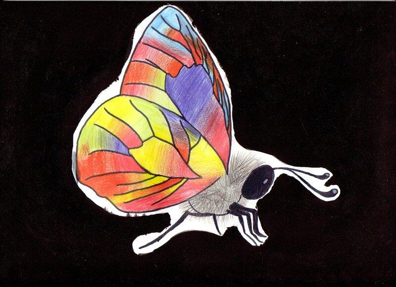 animal 8