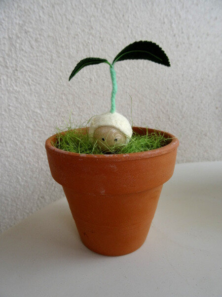 Germination pot
