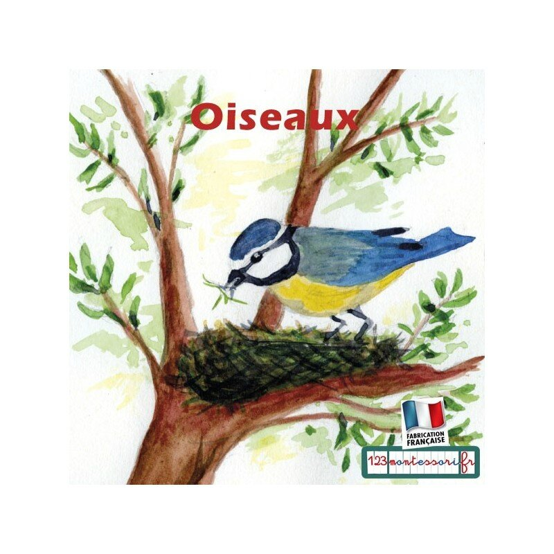 images-sequentielles-recits-montessori-l-oiseau
