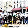 Prières de rue : marine s'engage à rétablir la laïcité et l'ordre public !