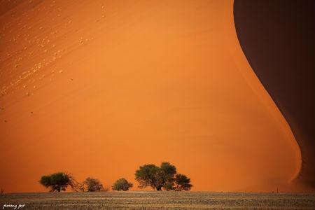 desert_du_namib