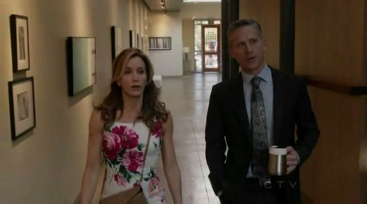 desperate housewives 8x20