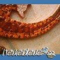 salamandre detail 3