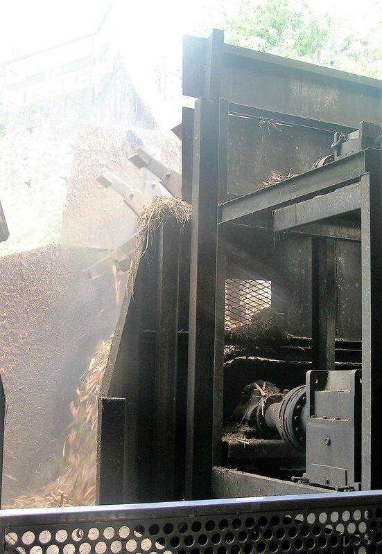 2016 03 09 (12) - distillerie JM site de Fond Préville à Macouba