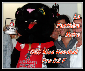 D2F OGC Nice La Panthère Noire