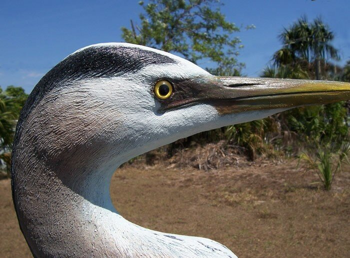 20_1_great_blue_heron_eye