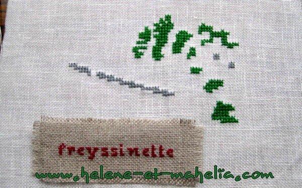 freyssinette_saljanv15_2