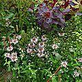 Jardin de la Source 12061666