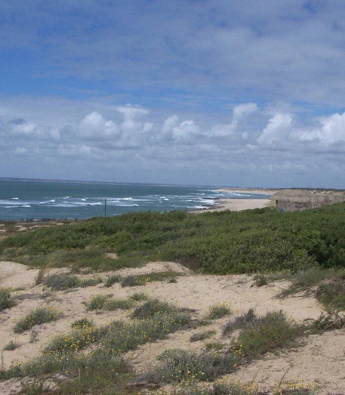 Bunkers de Verdon sur Mer