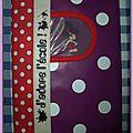 decembre 2011 cahier pin up ecole commande