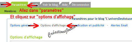012_dans_votre_blog_allez_dans_parametre