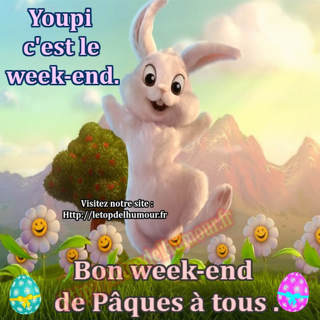 Paques-lapin-fleur-weekend-chocolat-humour-