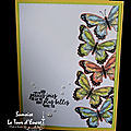 Envolée de papillons