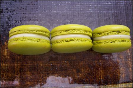 macaron_huile_d_olive