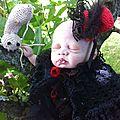 Ella west née le 7 avril 2012 37cm 1kg052