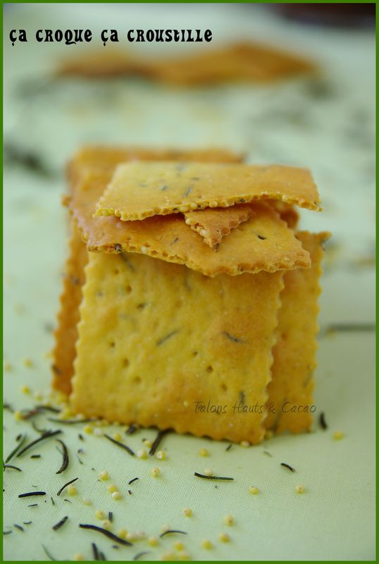 crackers2_copie