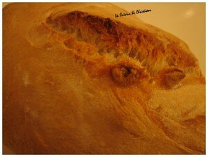 Pain_au_levain_d_tail_0208
