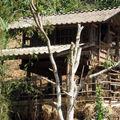 habitation dans le village