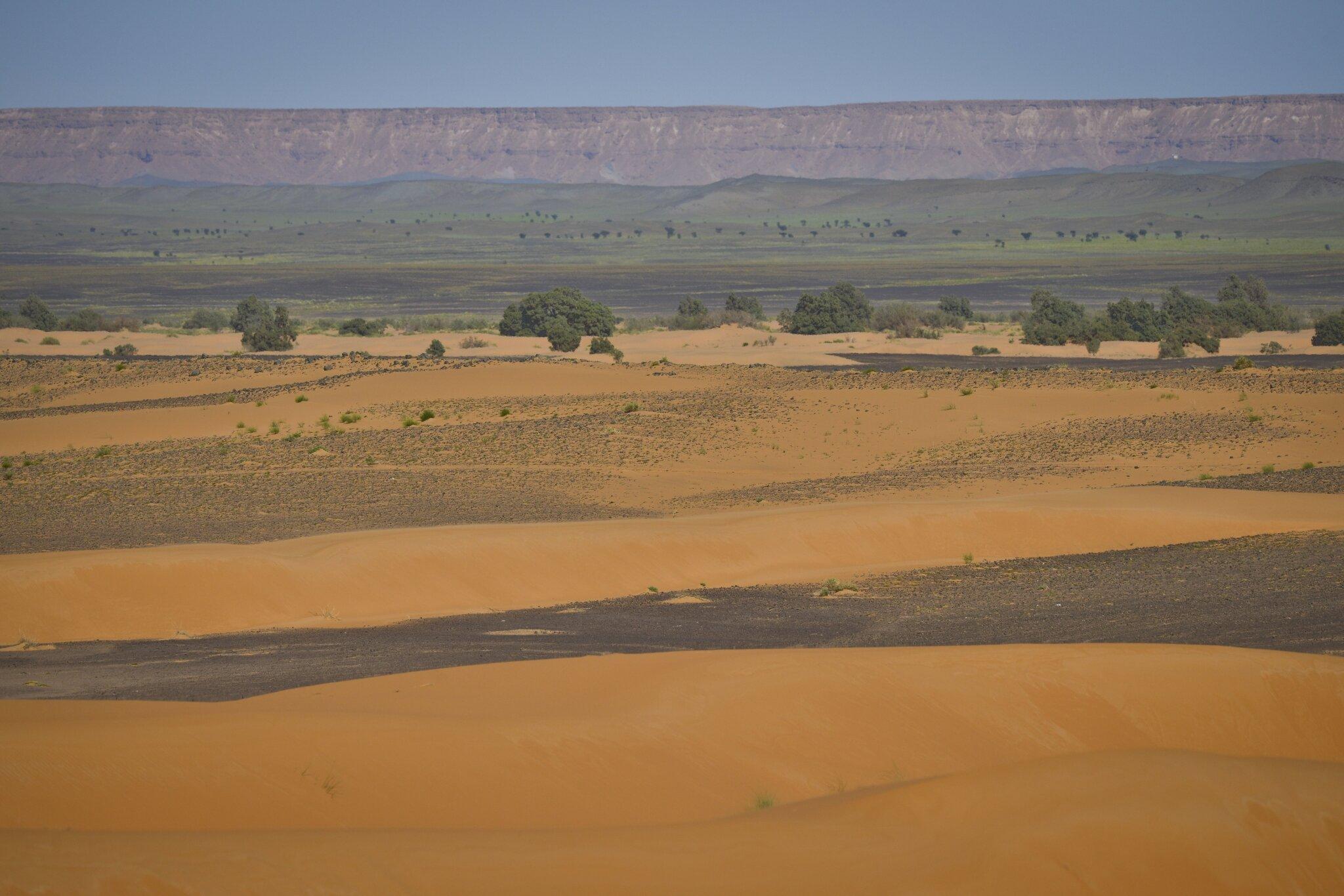 Les couleurs du désert... La Suite...