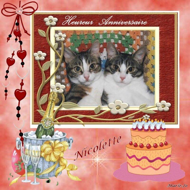 joyeux anniversaire nicolette 2