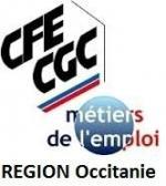 logo cfe cgc MDE occitanie 1