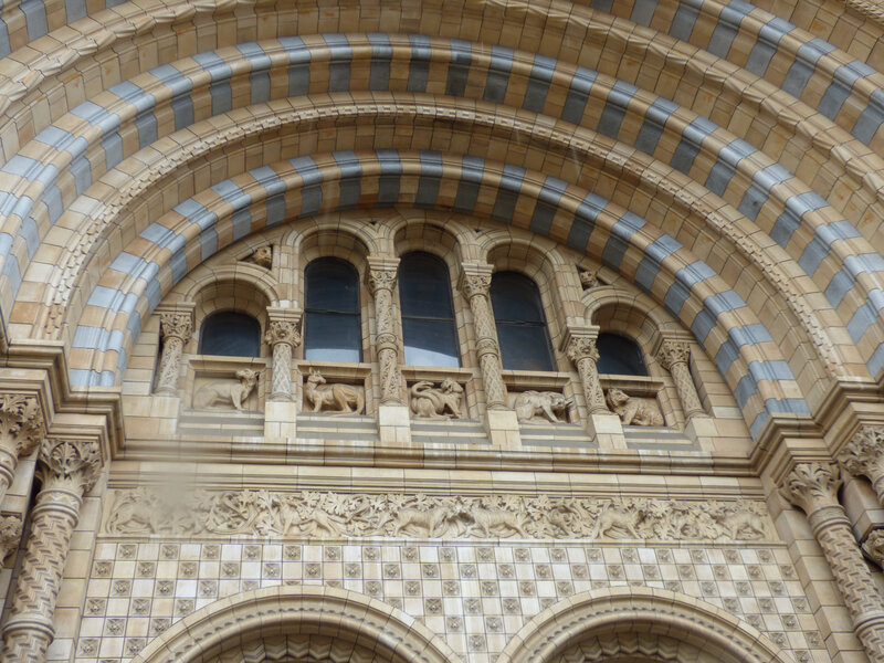 25 Londres Natural History Museum (6)