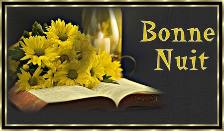 b_n_livre_fleursBPat
