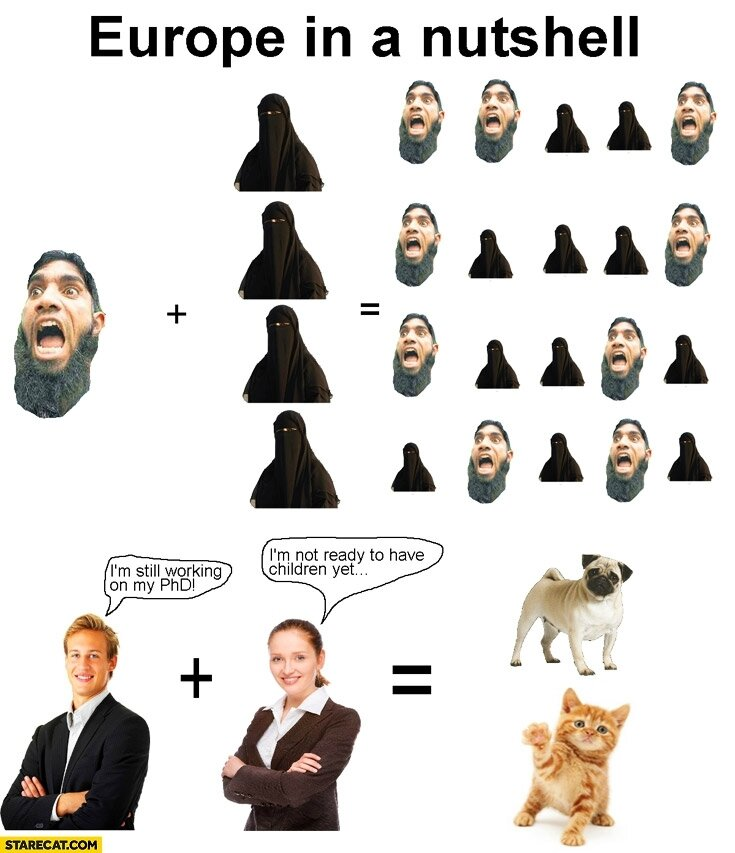 europe-in-a-nutshell-muslims-having-many-babies-im-still-working-on-my-phd-im-not-ready-to-have-children-yet