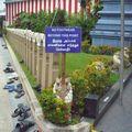 8 pas de chaussures dans le temple