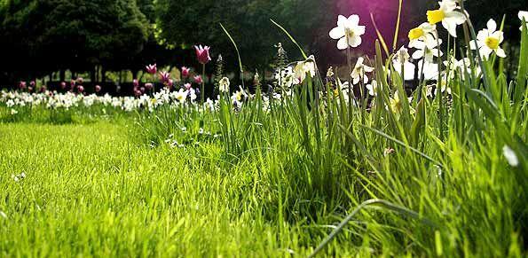metz_ville_jardin___1