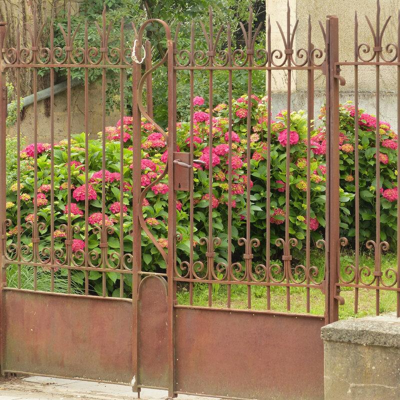 aa les fleurs du quartier5
