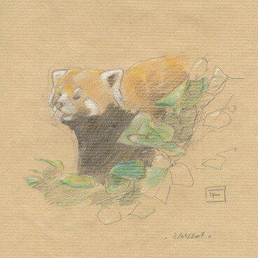 PandaRoux06