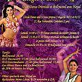 Week-end de danse orientale du 30/11 au 1er/12/2013 avec hayal à lyon (69)