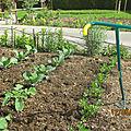 Un outil de jardinage le