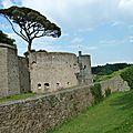 Le château de Clisson,et son pin parasol classé