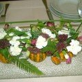 coloquintes fleuries