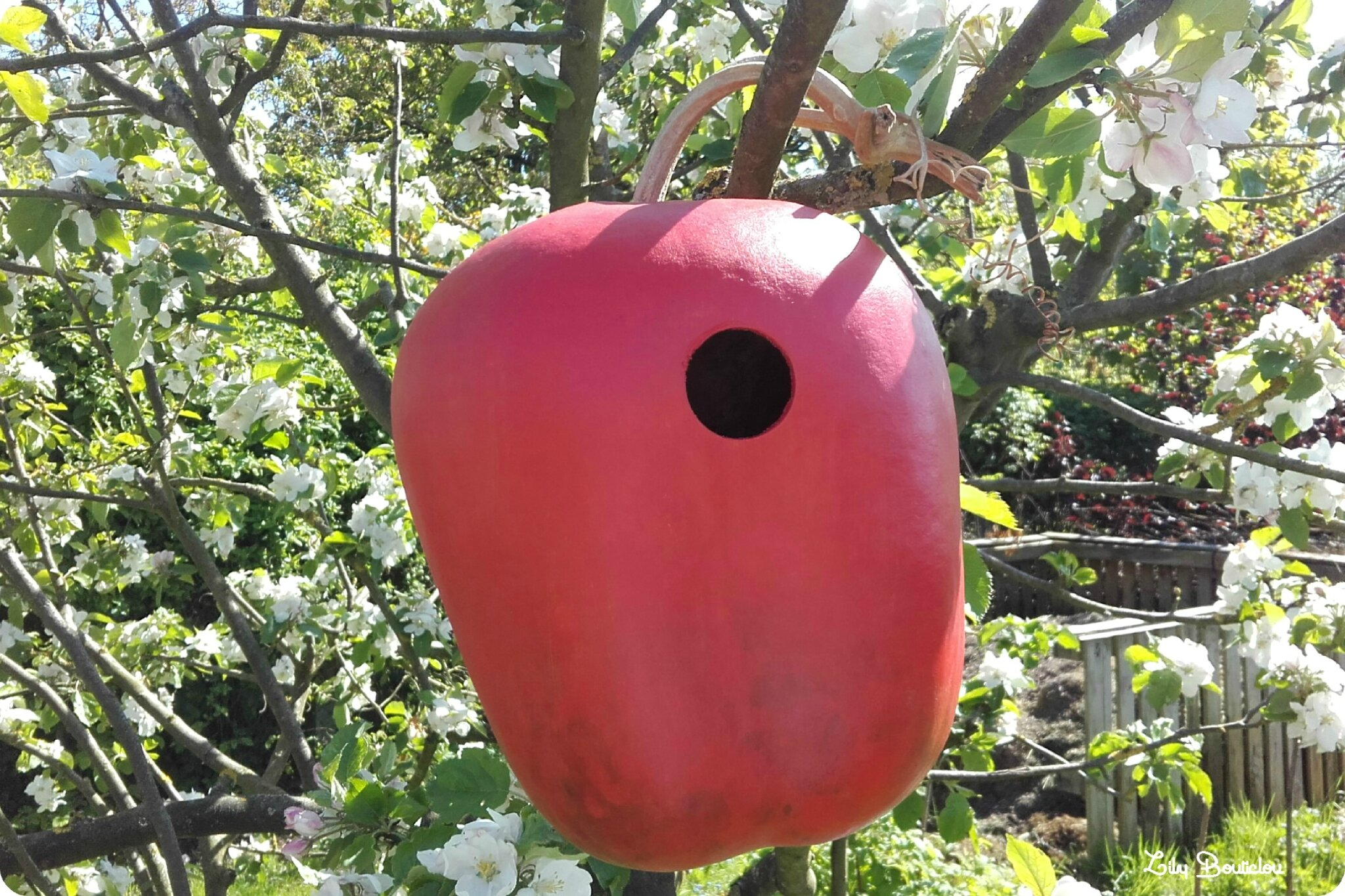nichoir calebasse pomme birdhouse calabasch apple lilybouticlou