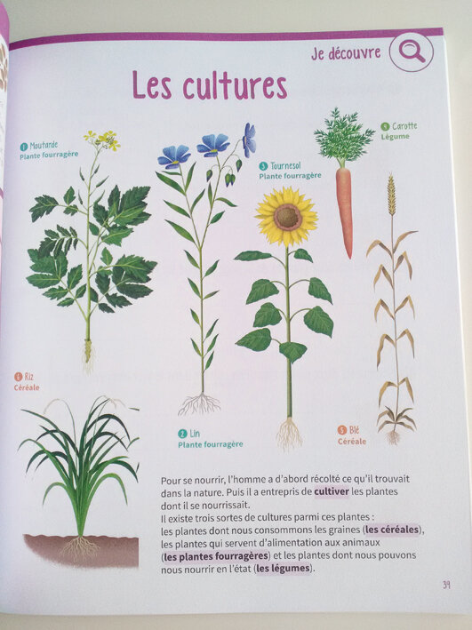 cahier-nature-rde-06