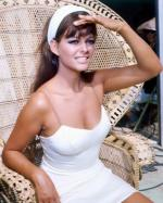 Wicker_sitting_inspiration-claudia_cardinale-1960s