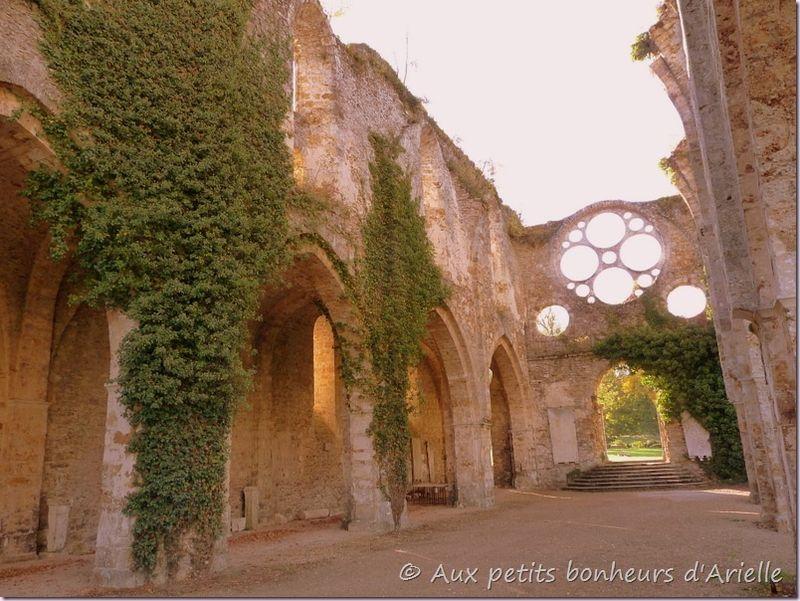Abbaye des Vaux de Cernay (20)
