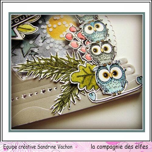 Carte Chouettes POUR TOI dt LCDE (4)